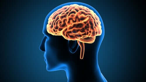 Victor Leborgne: przypadek w neuronauce
