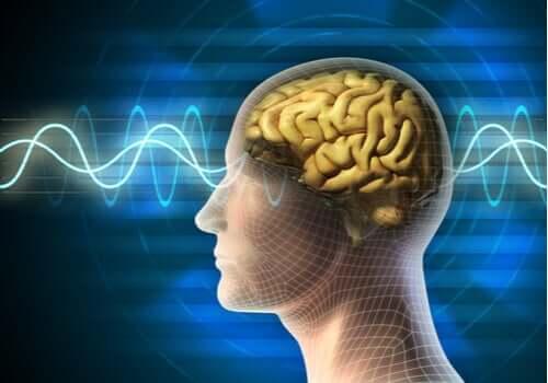 Terapia elektrowstrząsowa - jej charakterystyka i zastosowania