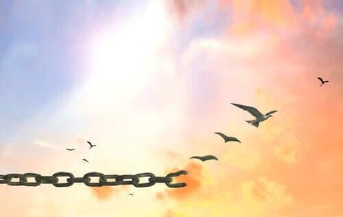 Łańcuch zamieniający się w ptaki