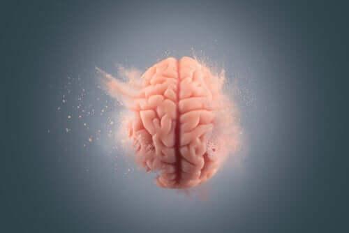 Rozmywający się mózg - zapominanie jest trudniejsze od pamiętania
