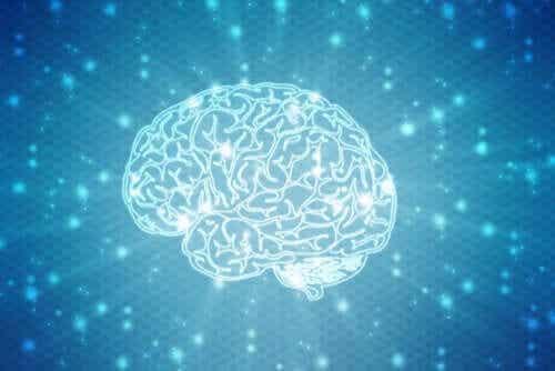 Neuromity - co jest prawdą a co mitem w neurobiologii?
