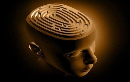 Labirynt w mózgu - epilepsja