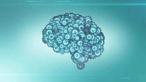 Mechanizmy mózgu