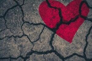Zespół takotsubo: jak boli złamane serce?