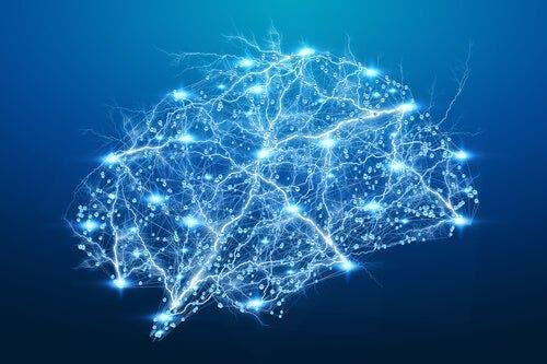 Podświetlony mózg - synchronizacja neuronalna