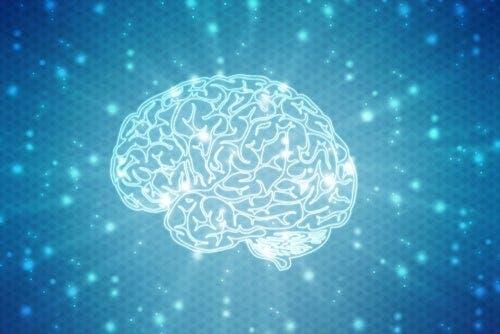 Świecący mózg - proces rehabilitacji neuropsychologicznej