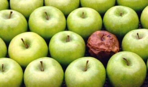 Teoria zgniłego jabłka w miejscu pracy