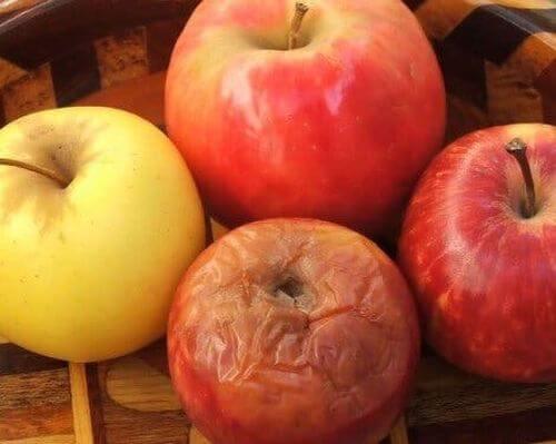Teoria zgniłego jabłka