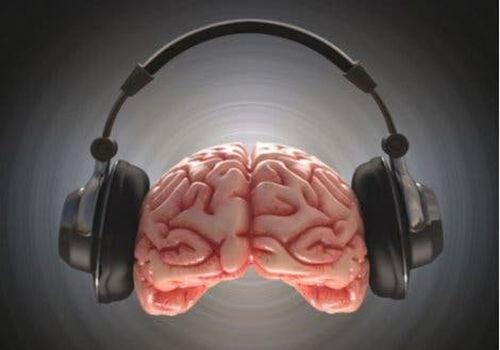 Mózg w słuchawkach - dudnienie różnicowe