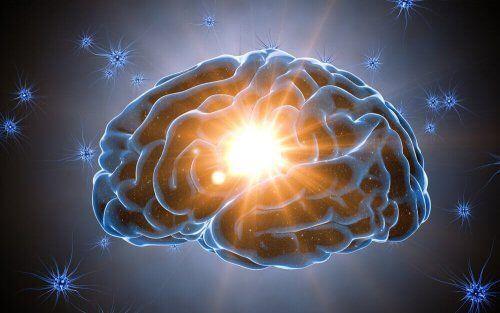 Twój mózg uwielbia niespodzianki