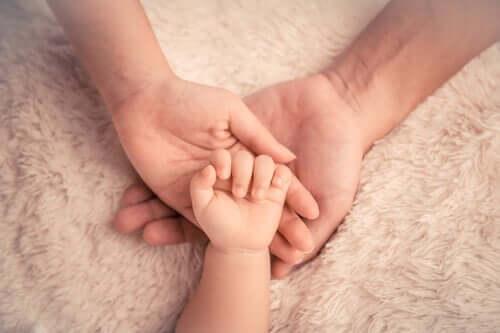 Ręce dorosłych i dziecka