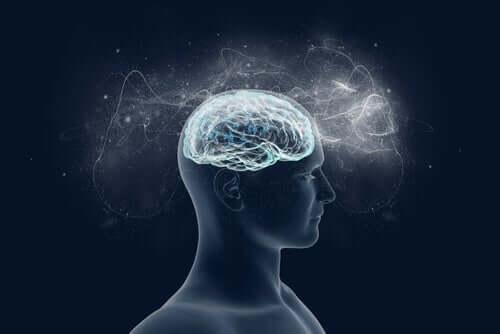 Zapracowany mózg