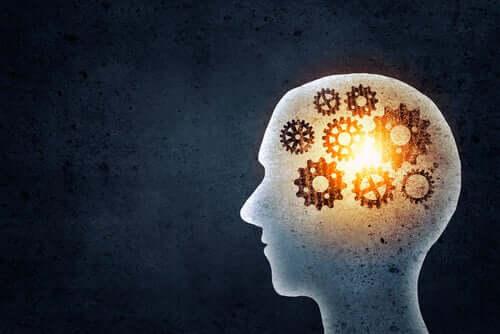 Trening pamięci: co może nam dać?