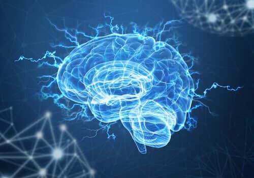 Neuroplastyczność i stres pourazowy