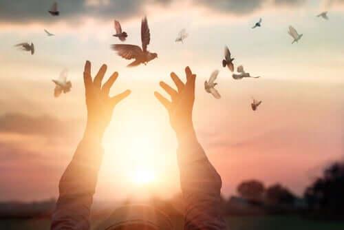 Ręce wyciągnięte ku ptakom