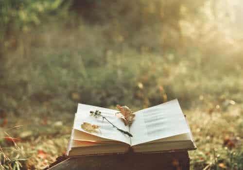Terapia poezją łagodzi cierpienie