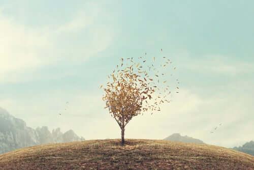 Drzewo na pustkowiu