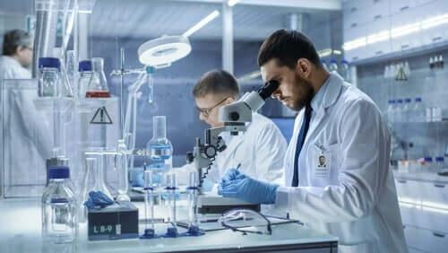 Badacze w laboratorium