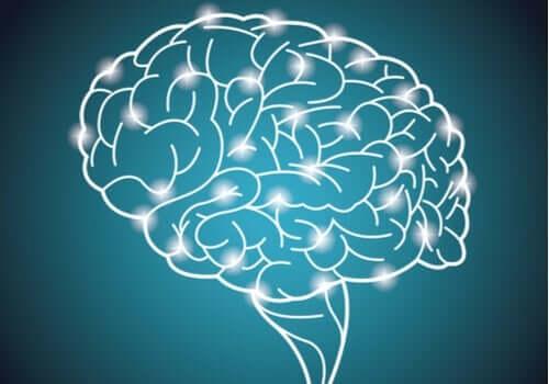 Największy światowy eksperyment dotyczący inteligencji