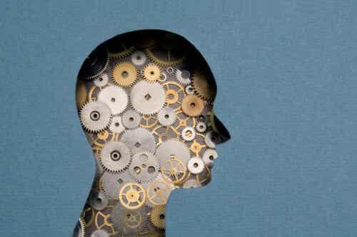 Neuropsychologia sądowa: definicja, cele i obszary zastosowania
