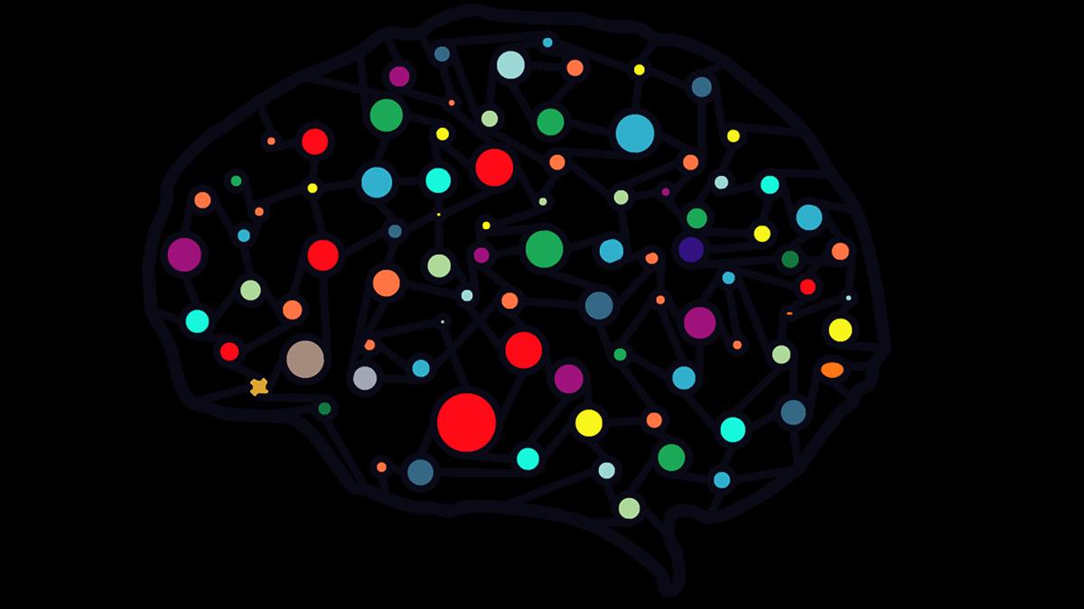 Schematyczny mózg