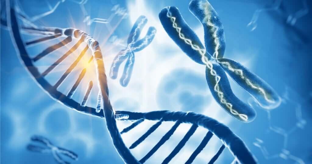 Zespół Klinefeltera - dodatkowy chromosom X u mężczyzn