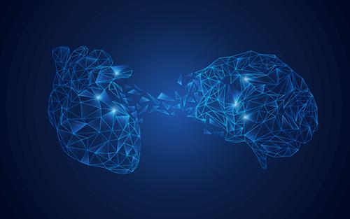 Mózg i serce połączone