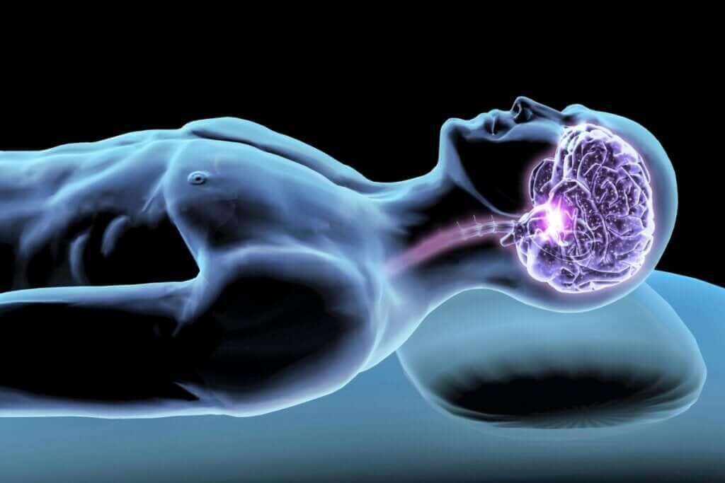 Hormony snu - strażnicy odpoczynku