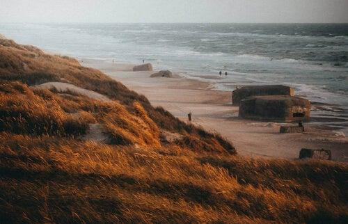 Plaża i bunkry