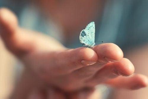 Mały, niebieski motyl na dłoni