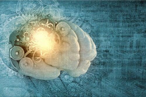 Metapamięć - co to jest i czy można ją ulepszyć?