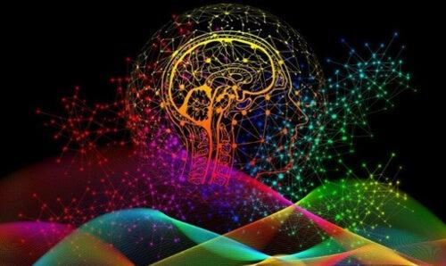 Unikalność mózgu jest jak odciski paców - na czym to polega?