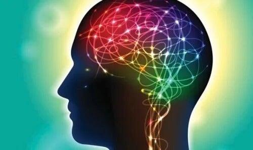 Moc kształtowania własnego mózgu