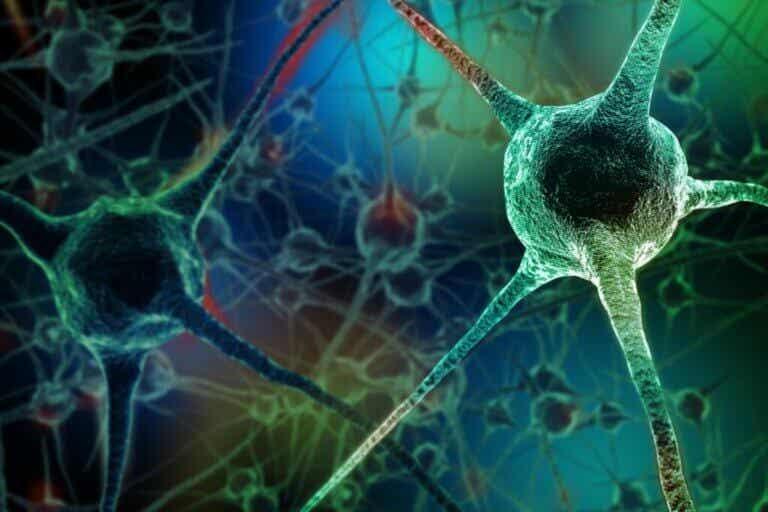 Co zabija neurony? 7 nawyków, których lepiej unikać
