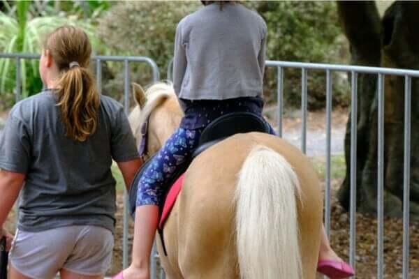 Terapia z udziałem koni: rodzaje i zalety