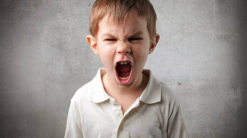 Rozgniewane dziecko
