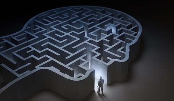 Mózg jako labirynt