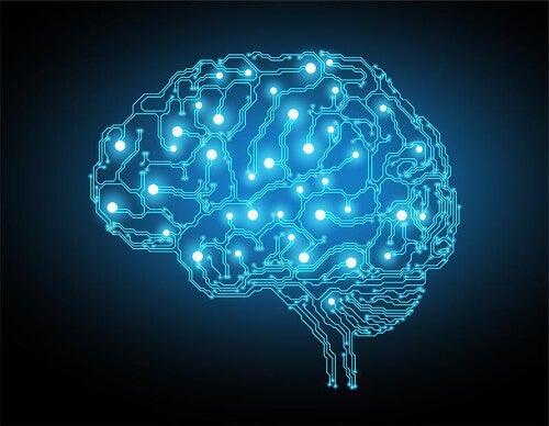 Brenda Milner: życie poświęcone neuropsychologii
