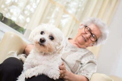 Starsza pani i mały, biały pies