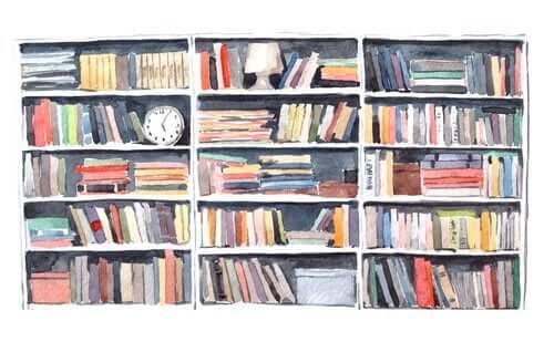 Szkic regału z książkami