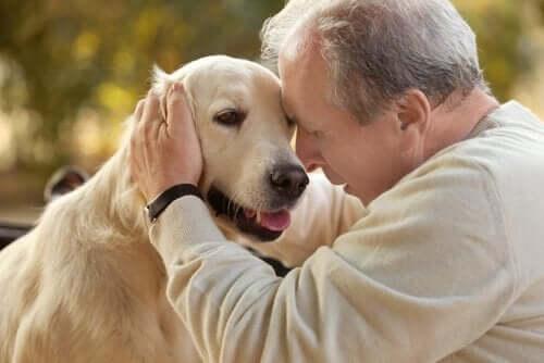 Terapia z udziałem zwierząt kontra choroba Alzheimera