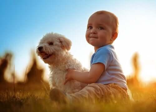 Zwierzęta i dzieci: zalety wspólnego dorastania