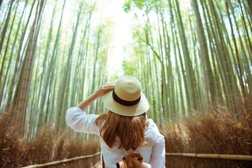 Zbliżyć się do natury: cztery przydatne ćwiczenia