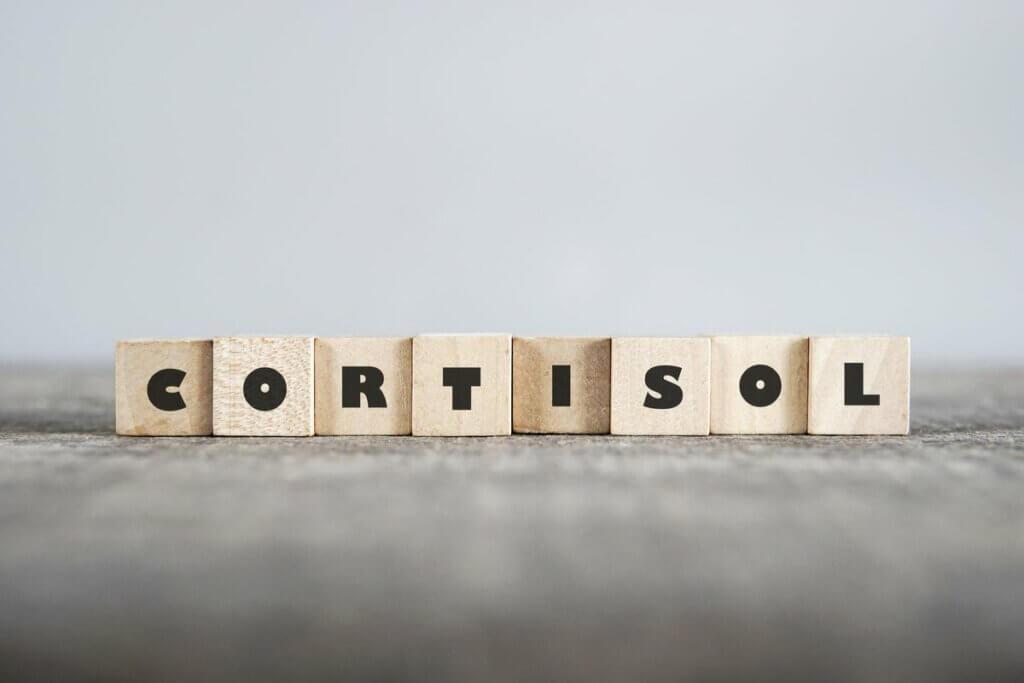 Kortyzol z klocków