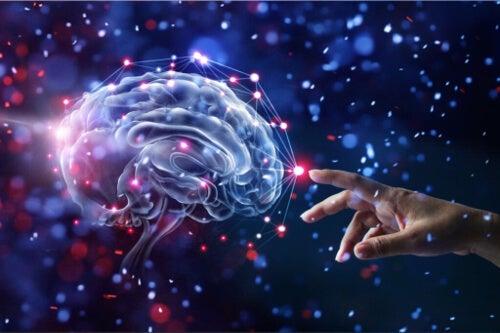 Nawyki które dbają o mózg i zmniejszają ryzyko demencji