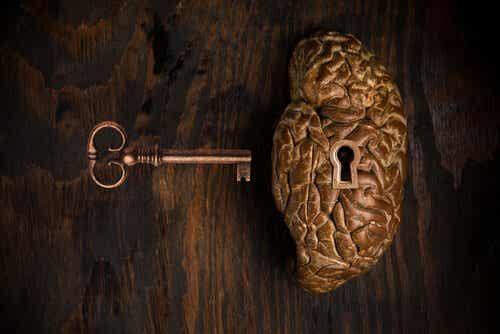 Klucz do mózgu - ilustracja