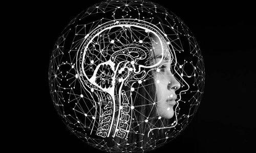 Nawyki, które dbają o mózg