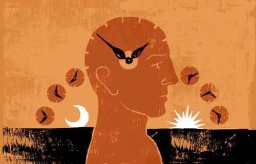 Teoria biorytmów: trzy cykle będące z nami całe życie