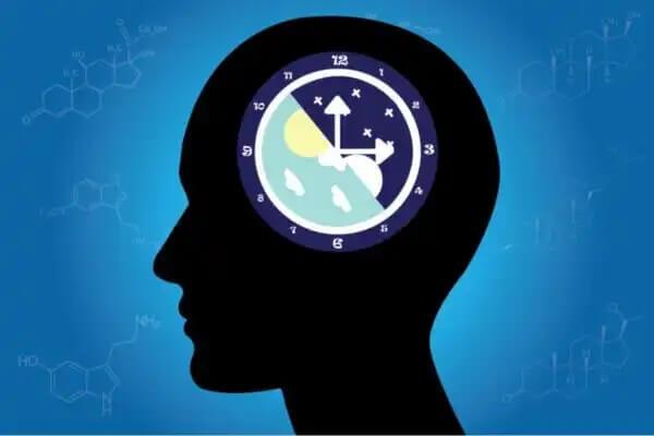 Mózg jako zegar