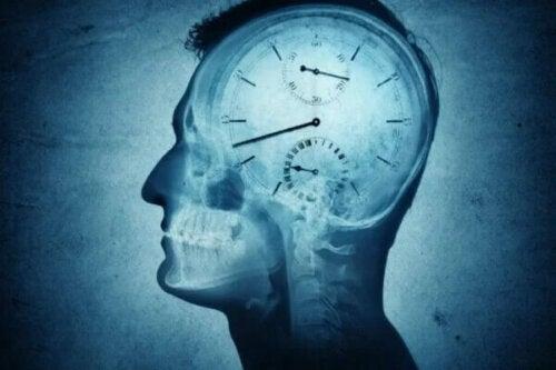 Chronobiologia i jej wpływ na człowieka